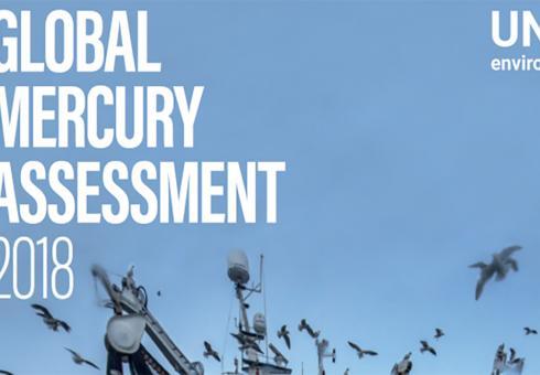 Selin_UN Mercury Assessment_WEB.jpg