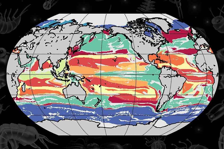 MIT-Plankton-Province-01-press_WEB.jpg