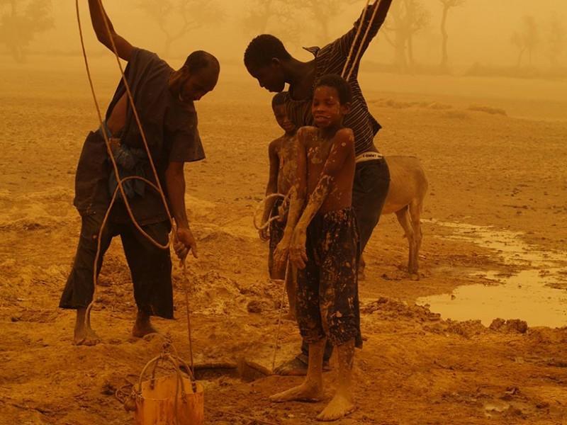 water-irrigation-dogon-plateau-mali-sandstorm-800x600.jpg