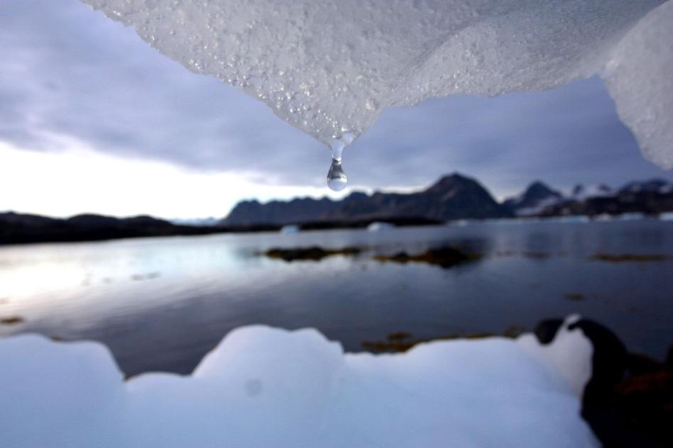 Climate Risk Disclosure Panel.jpg
