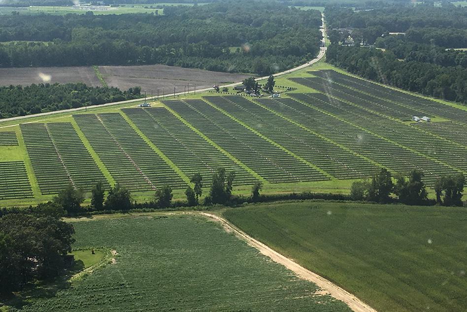 MIT-Solar-Farm.jpg